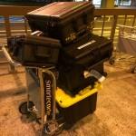 Flock of Pelicans in Honolulu.  Big overweight baggage bill.